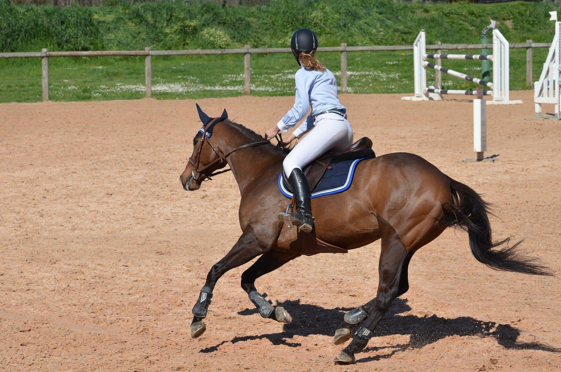 Paardrijden gespannen buik
